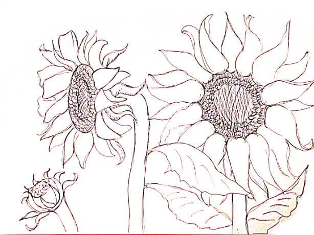 ve tranh tuong hoa huong duong 10 vẽ tranh tường Mỹ Thuật Fly Art