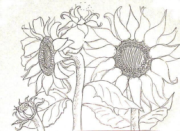 ve tranh tuong hoa huong duong 11 vẽ tranh tường Mỹ Thuật Fly Art