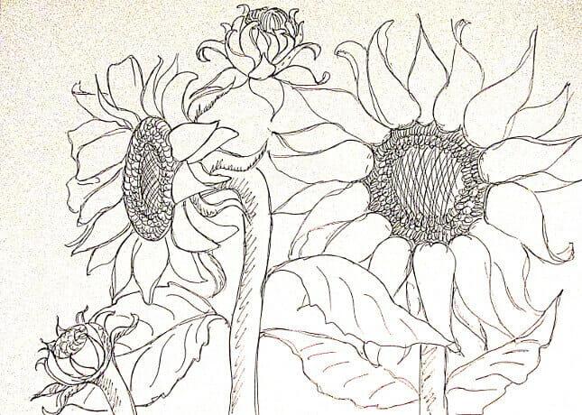 ve tranh tuong hoa huong duong 12 vẽ tranh tường Mỹ Thuật Fly Art