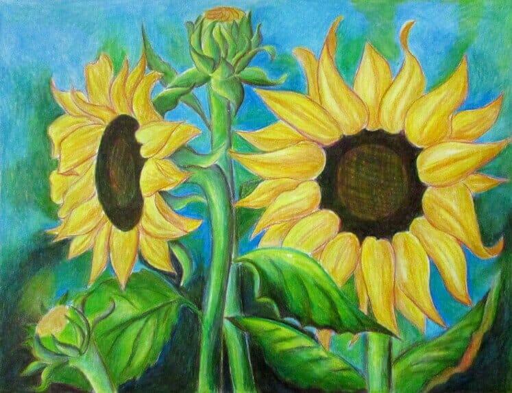 ve tranh tuong hoa huong duong 13 vẽ tranh tường Mỹ Thuật Fly Art