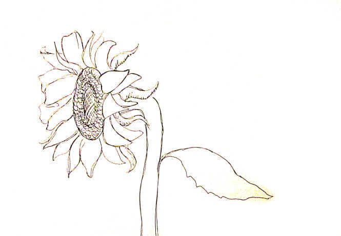 ve tranh tuong hoa huong duong 5 vẽ tranh tường Mỹ Thuật Fly Art