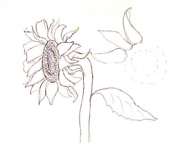 ve tranh tuong hoa huong duong 6 vẽ tranh tường Mỹ Thuật Fly Art