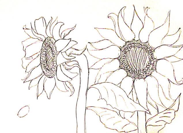 ve tranh tuong hoa huong duong 8 vẽ tranh tường Mỹ Thuật Fly Art