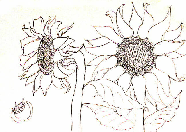 ve tranh tuong hoa huong duong 9 vẽ tranh tường Mỹ Thuật Fly Art
